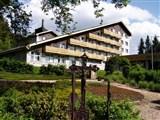 Hotel a depandance SRNÍ - Drvenik