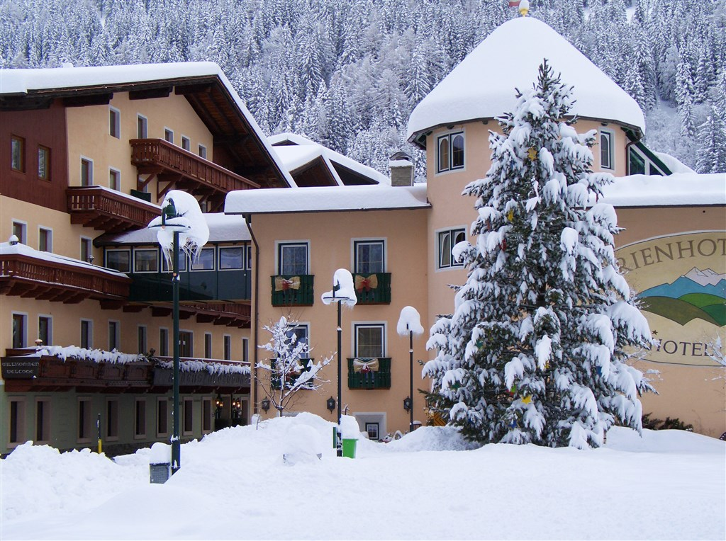 Hotel ALBER ALPENHOTEL - Mölltal-Ankogel