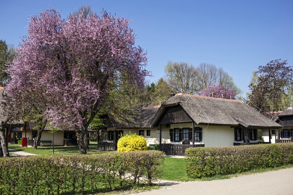 Bungalovy TERMAL - Moravske Toplice