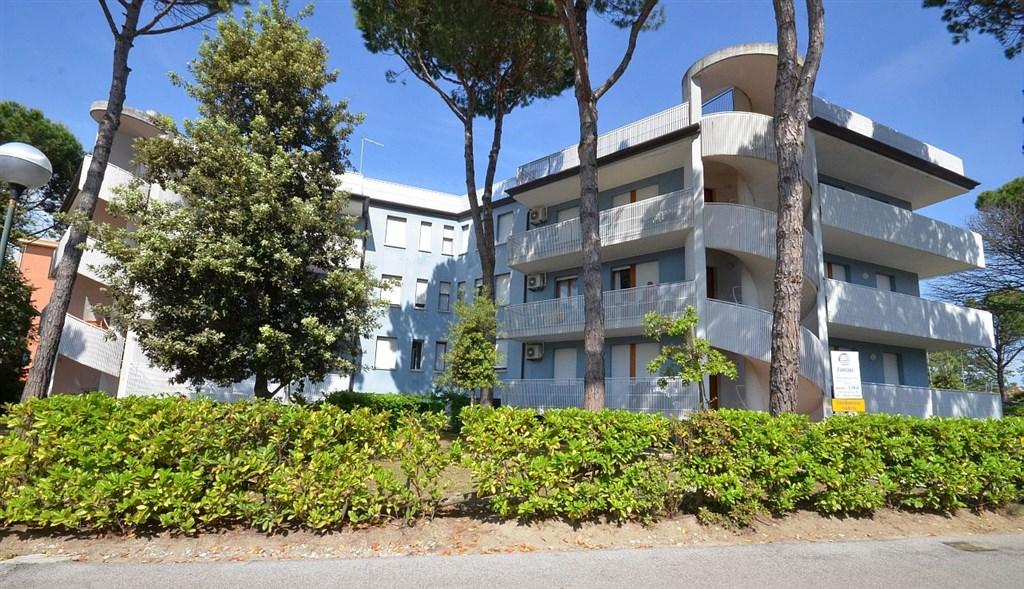 Apartmány NARCISI -