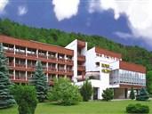 Hotel FLÓRA - Trenčianské Teplice