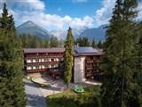 Wellness Hotel BOROVICA -